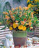 Alstroemeria (alstroemeria), dahlia, grasses