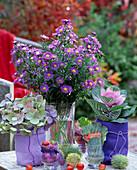 Aster, Hydrangea, Brassica