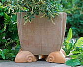 so that the irrigation water can drain well, you place the clay pot