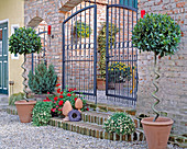 Courtyard entrance with brick wall and with Laurus nobilis