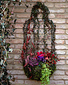 Basket of 'Wirework' as a wall container overgrown with Hedera, Calluna