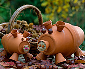 Pigs made of clay pots, chestnuts, acorns and sisal