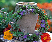 Wreath of herbs from Borago (Borage), Origanum, Salvia