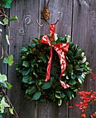 Door wreath with Ilex aquifolium (holly) and red ribbon