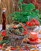 Capsicum frutescens (Cayenne, Laurus nobilis (Laurel)