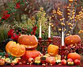 Pumpkin, Cucurbita (pumpkin), Punica (pomegranate), Malus