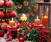 Hedera ivy, rose rosehips, malus ornamental apple, punica granatum pomegranate