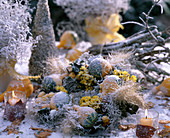 Wreath with hoarfrost, snow, cucurbita (ornamental squash), limonium