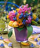 Hyacinthus (hyacinth), Muscari (grape hyacinth), Tulipa