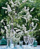 Spiraea arguta (bridal pirat) in glasses and bottles