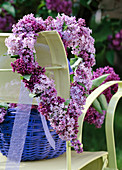 Syringa vulgaris, heart of lilac flowers hanged on the back of the chair