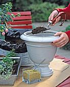 Bucket with fox stem