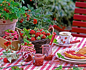 Fragaria (strawberries, strawberry jam)