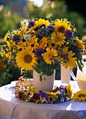 Helianthus (sunflowers