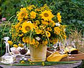 Helianthus (sunflower), Helenium (sunflower)