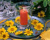 Windlight on tin plate