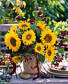 Helianthus (sunflower), Rosa (Rosehip)