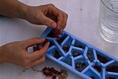 Berries Ice cubes