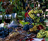 Metal storage and tray with Vitis (grape)