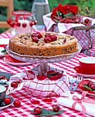 Cherry pie, prunus (cherries)
