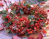 Wreath made of roses (rosehip) and calocephalus (barbed wire), cornus (dogwood)