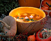 Cucurbita eroded, candles and small pumpkins swimming, pink