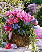 Plant metal basket