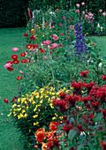 Flower bed with Monarda, Oenothera, Papaver, Delphinium and Dahlia