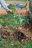 Compost, woman places grass clippings on compost pile