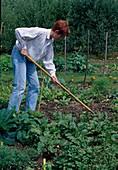 Loosen up soil in the vegetable garden