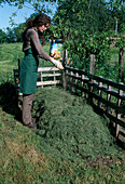 Building a compost ,: Apply compost accelerator