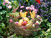 Easter nest with colored eggs