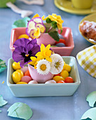 Bowl with sugar eggs