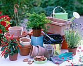 Planting utensils