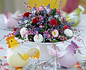 Bowl of Bellis (daisies)