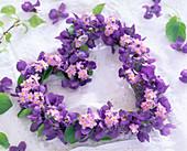 Heart of viola odorata (fragrance violet)
