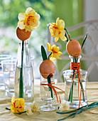 Daffodils stuck through egg