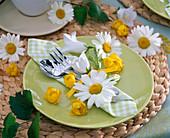 Leucanthemum (daisies)