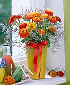Zinnia (orange zinnias)