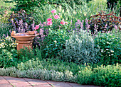 Herbs bed