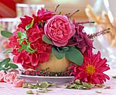 Pink 'Leonardo Da Vinci' (Rose)