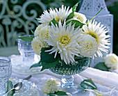 Dahlia (white dahlia)