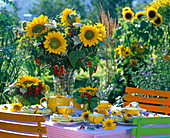 Helianthus (Sunflower), Viburnum (Snowball)