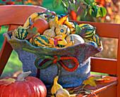 Cucurbita (pumpkin) in giant felt hat