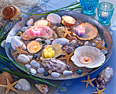 Zinc bowl with sand, shells, stones, starfish