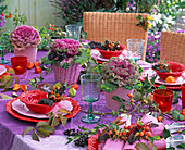 Brassica (ornamental cabbage), pink (rosehip)