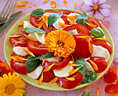 Lycopersicon (tomato) with mozarella