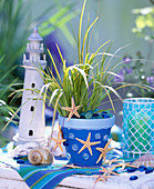 Decorate clay pots maritim