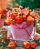Pink planter filled with Physalis, Hippophae