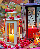 Lanterns with candles, decorated with malus (ornamental apple)
